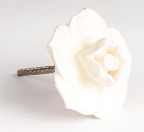 Türknauf Rose weiß