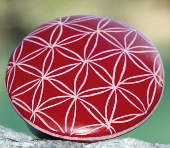 Handschmeichler Lebensblume, rot