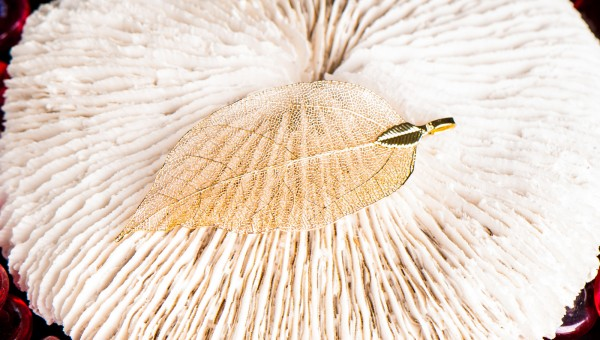 Goldenes Blatt, klein