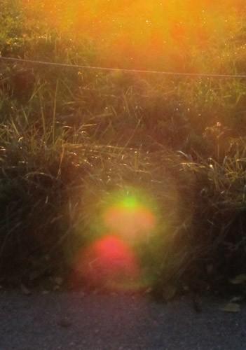 Lichtkarte - Erwach(s)en
