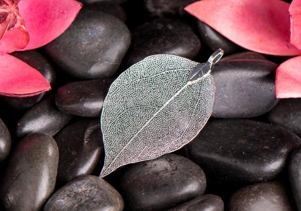 Silbernes Blatt, klein