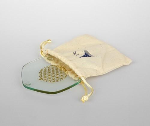 Golden Voyagerplatte im Beutel 9 cm