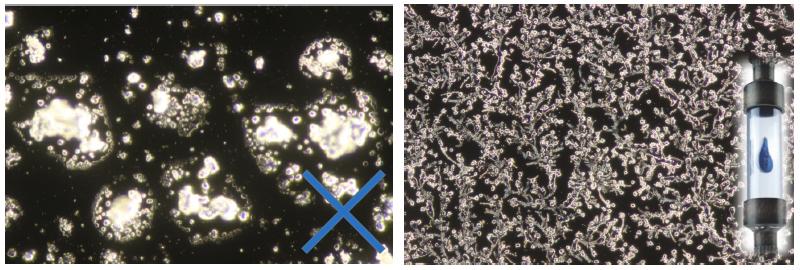 Kristalle eines Wassertropfens