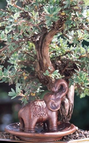 Räucherhalter Elefant auf Lotusblume